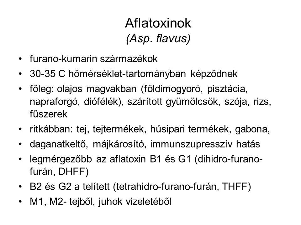 Aflatoxinok (Asp. flavus)
