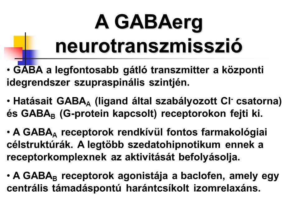 A GABAerg neurotranszmisszió