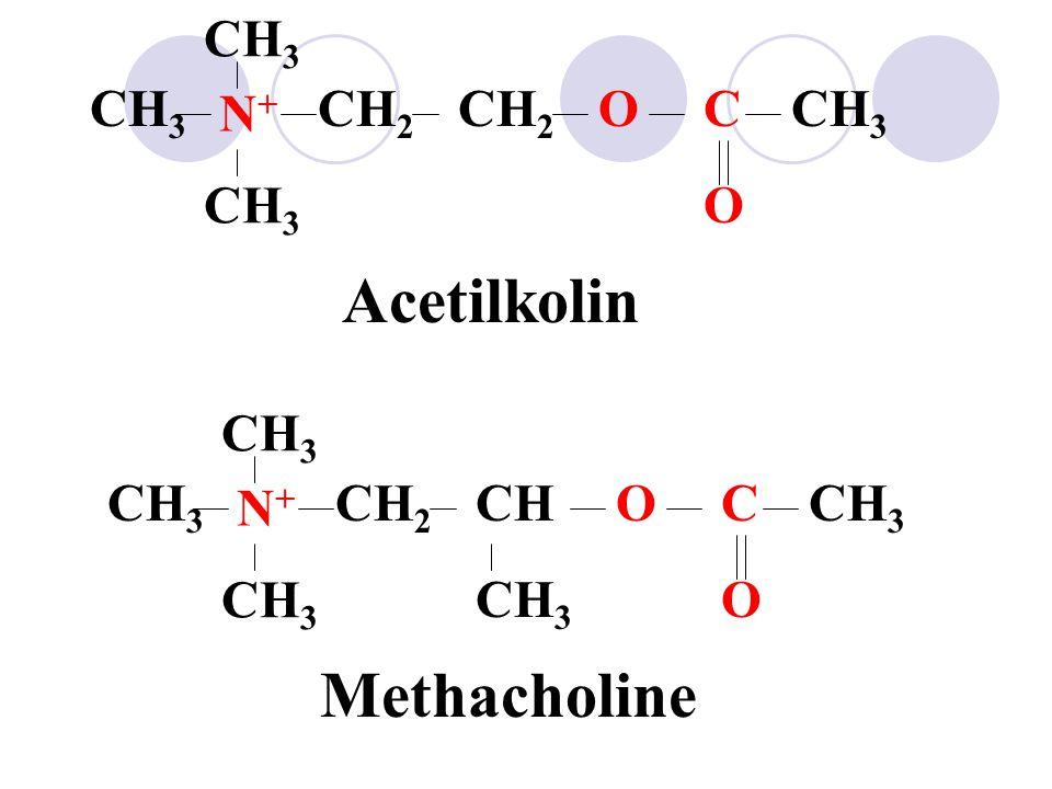 Acetilkolin Methacholine