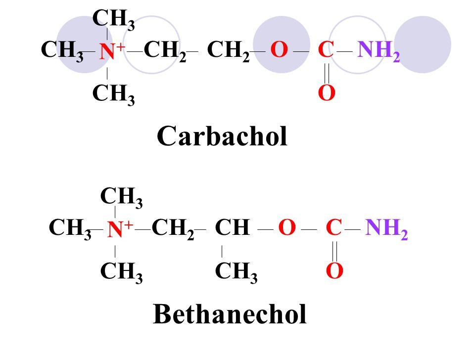Carbachol Bethanechol