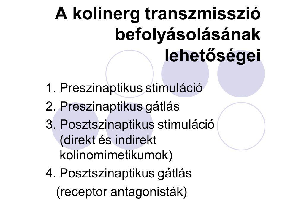 A kolinerg transzmisszió befolyásolásának lehetőségei
