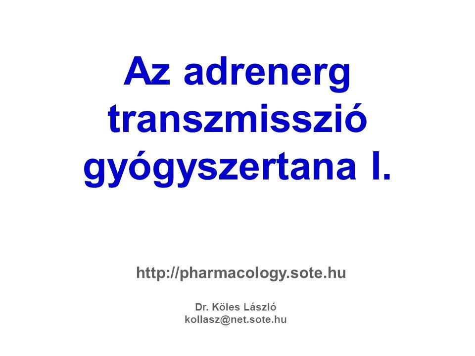 Az adrenerg transzmisszió gyógyszertana I.