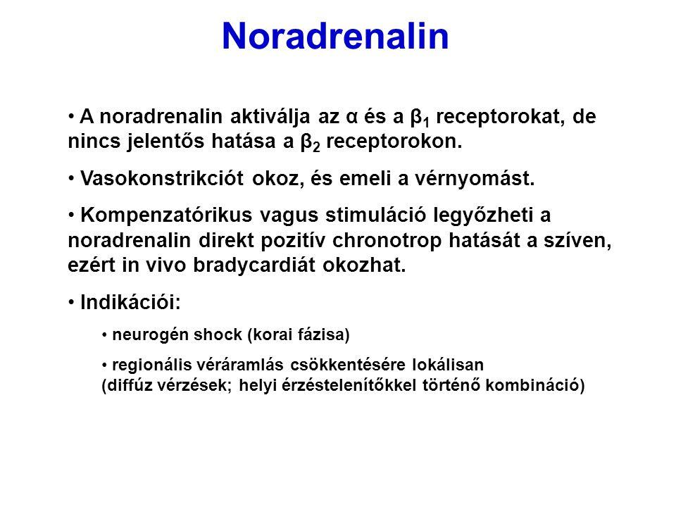 Noradrenalin A noradrenalin aktiválja az α és a β1 receptorokat, de nincs jelentős hatása a β2 receptorokon.