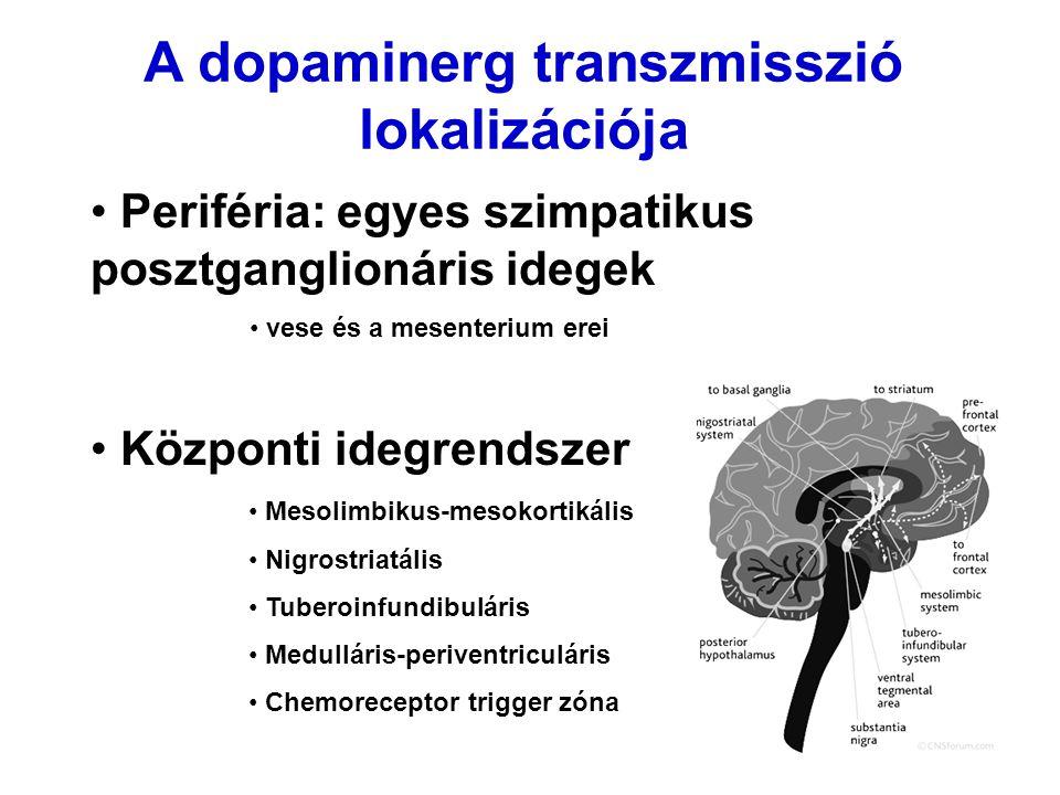 A dopaminerg transzmisszió lokalizációja