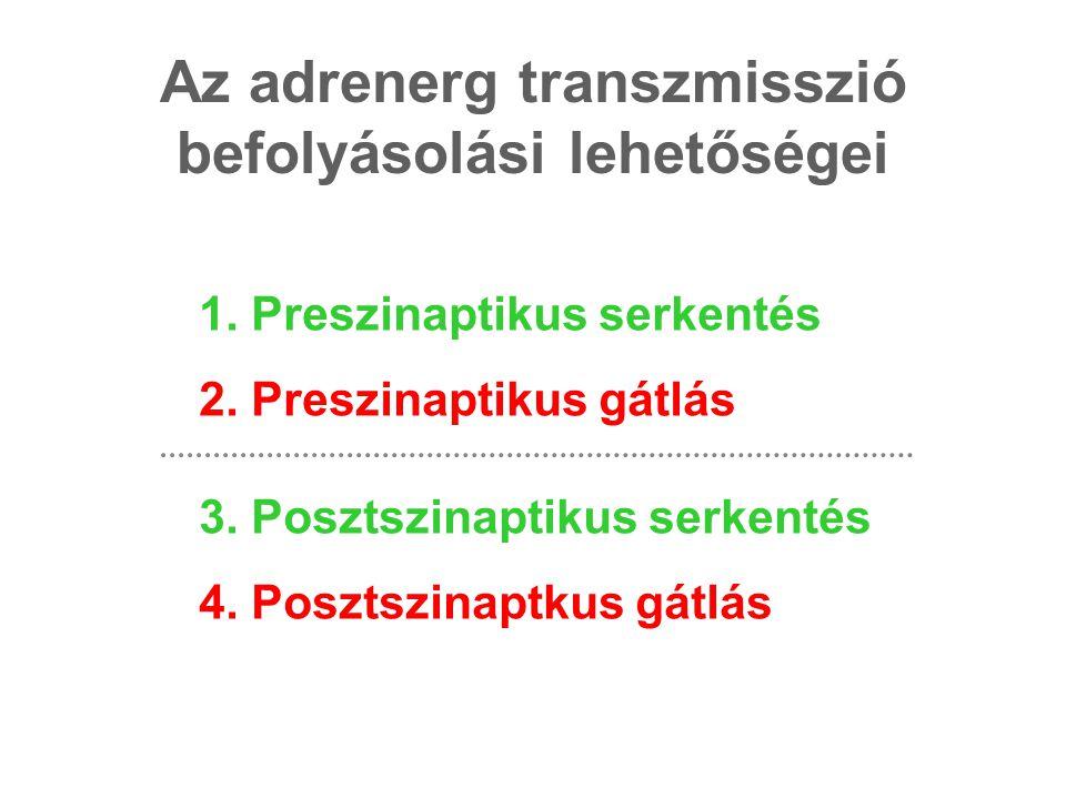 Az adrenerg transzmisszió befolyásolási lehetőségei
