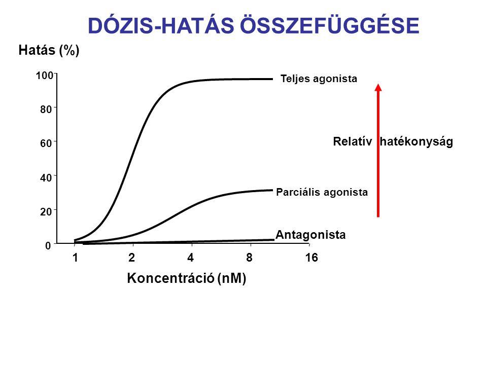 DÓZIS-HATÁS ÖSSZEFÜGGÉSE