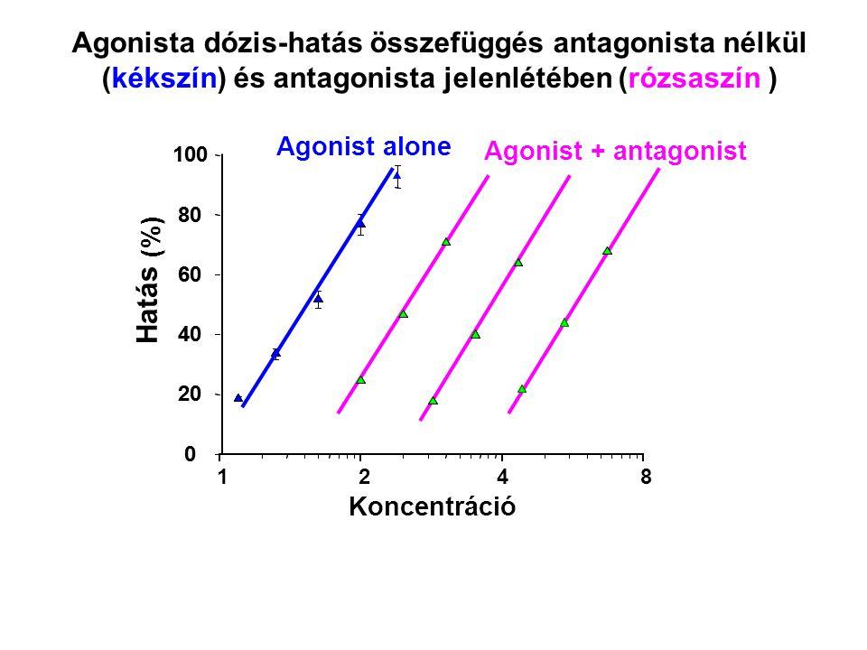 Agonista dózis-hatás összefüggés antagonista nélkül (kékszín) és antagonista jelenlétében (rózsaszín )