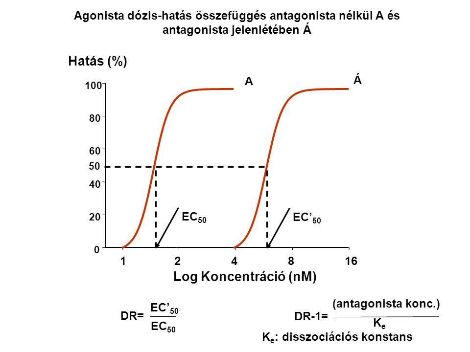 Hatás (%) Log Koncentráció (nM)