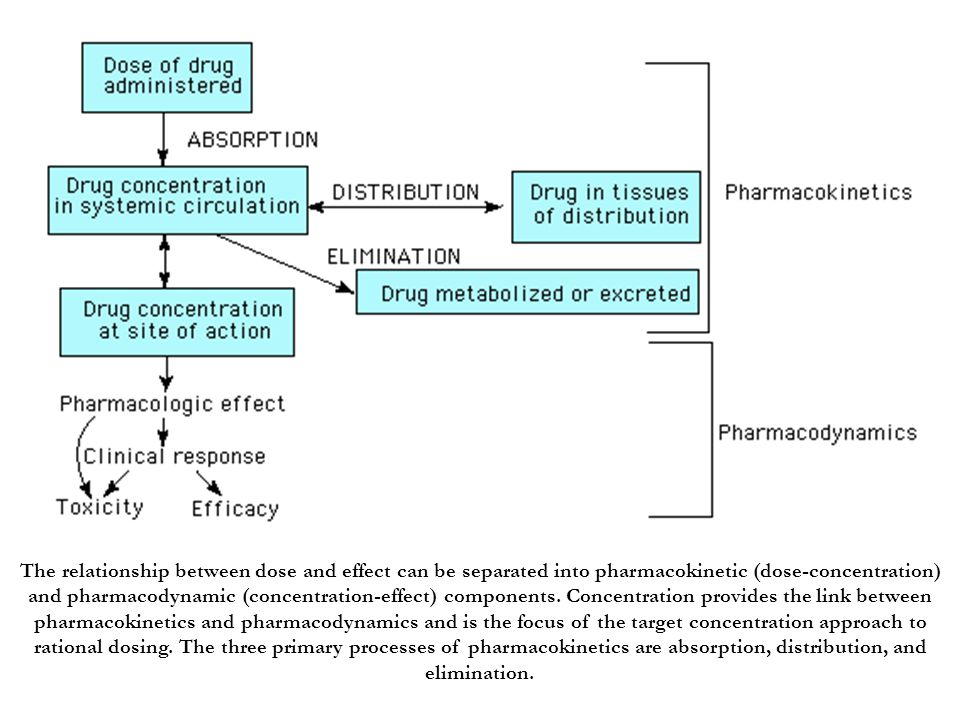 The relationship between dose and effect can be separated into pharmacokinetic (dose-concentration) and pharmacodynamic (concentration-effect) components.