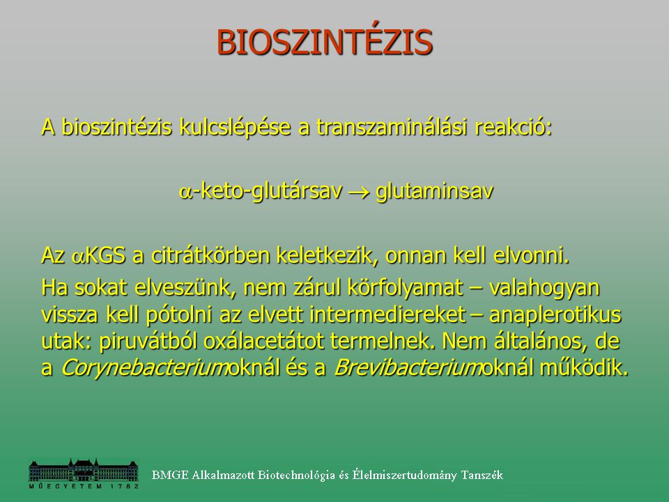 -keto-glutársav  glutaminsav