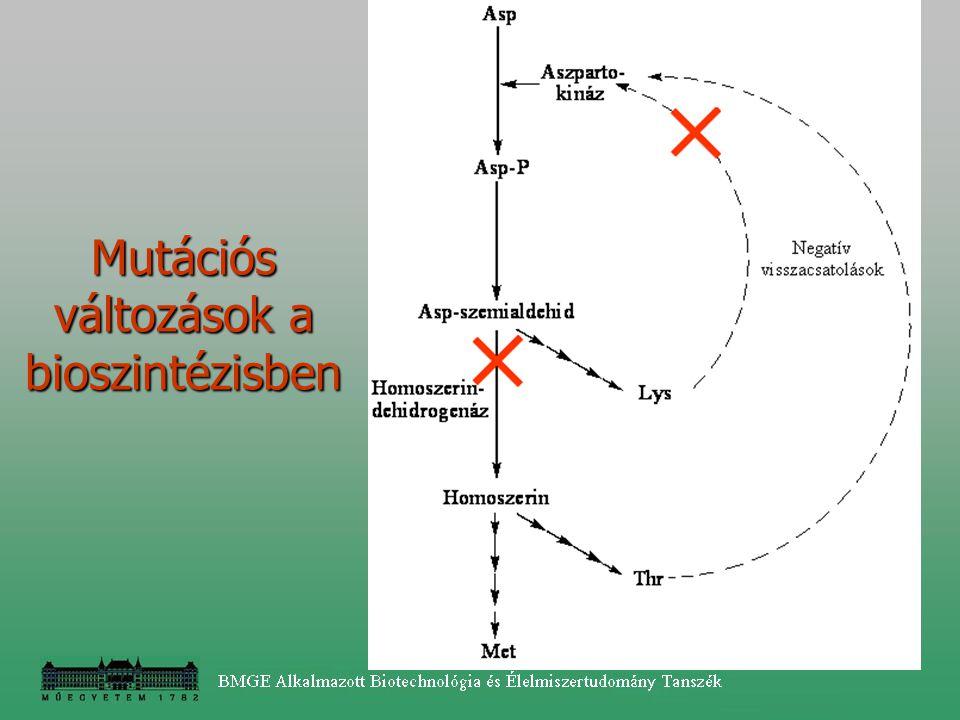 Mutációs változások a bioszintézisben