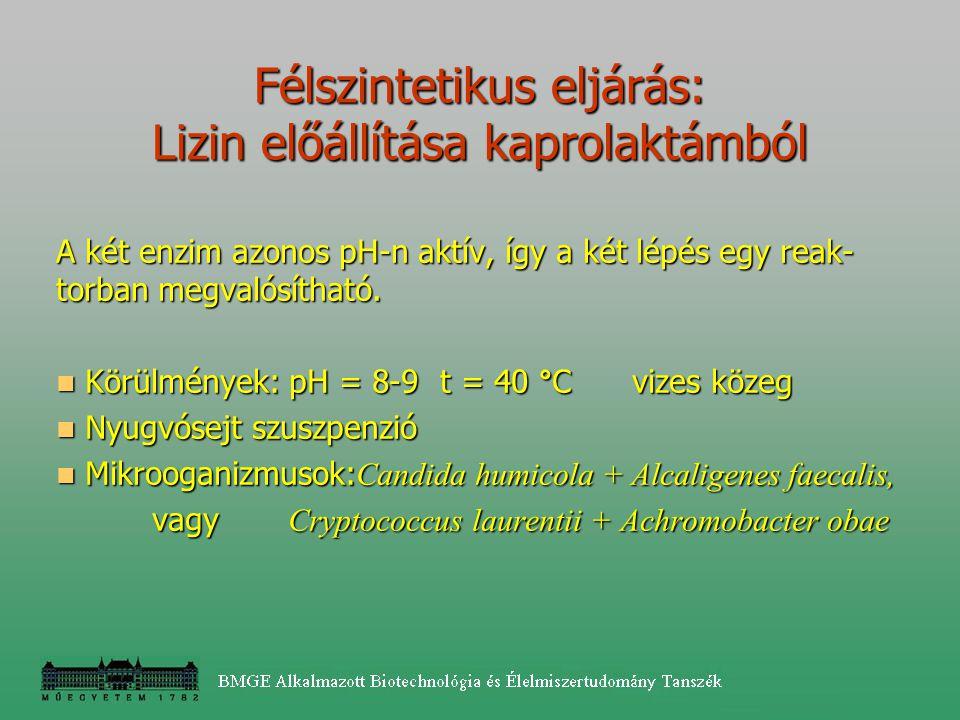 Félszintetikus eljárás: Lizin előállítása kaprolaktámból