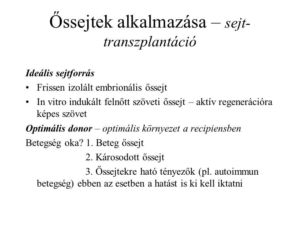 Őssejtek alkalmazása – sejt-transzplantáció