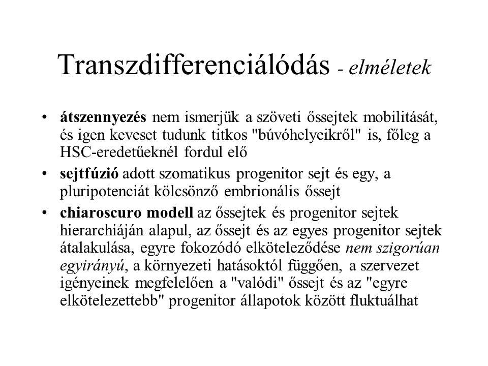 Transzdifferenciálódás - elméletek
