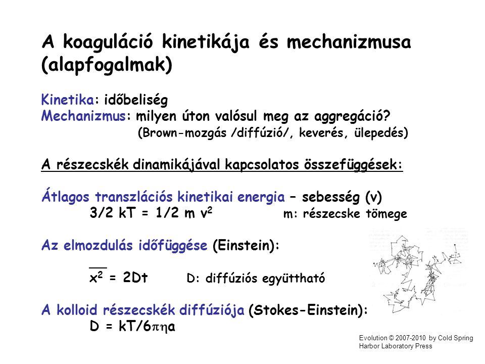 A koaguláció kinetikája és mechanizmusa (alapfogalmak)