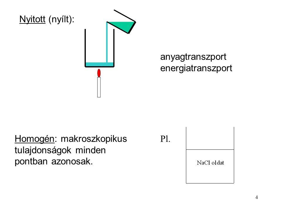 Nyitott (nyílt): anyagtranszport. energiatranszport. Homogén: makroszkopikus tulajdonságok minden pontban azonosak.