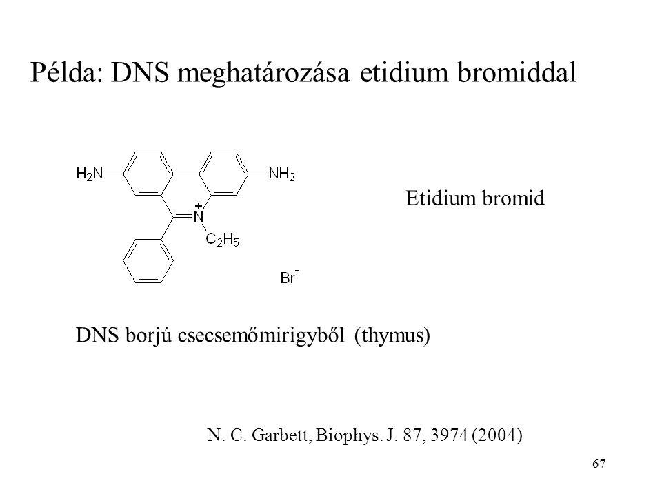 Példa: DNS meghatározása etidium bromiddal