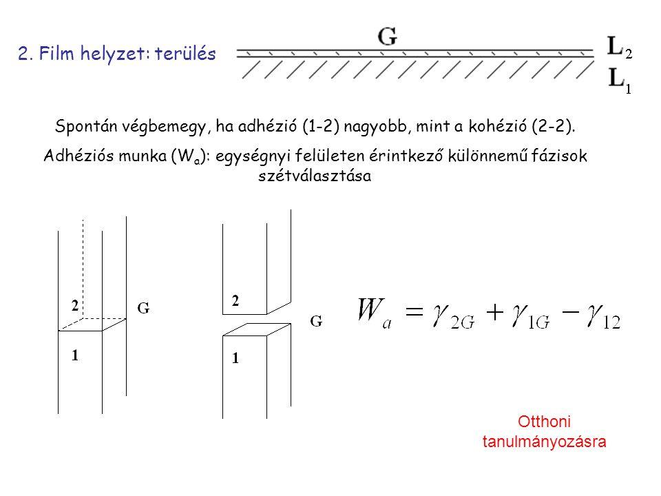 2. Film helyzet: terülés Spontán végbemegy, ha adhézió (1-2) nagyobb, mint a kohézió (2-2).