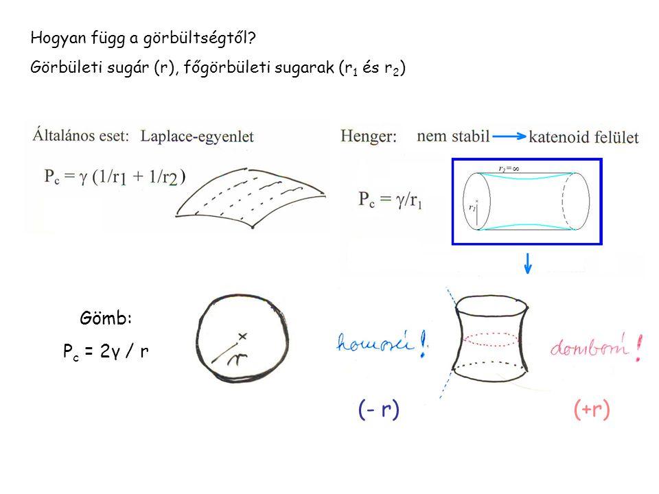 (- r) (+r) Gömb: Pc = 2γ / r Hogyan függ a görbültségtől