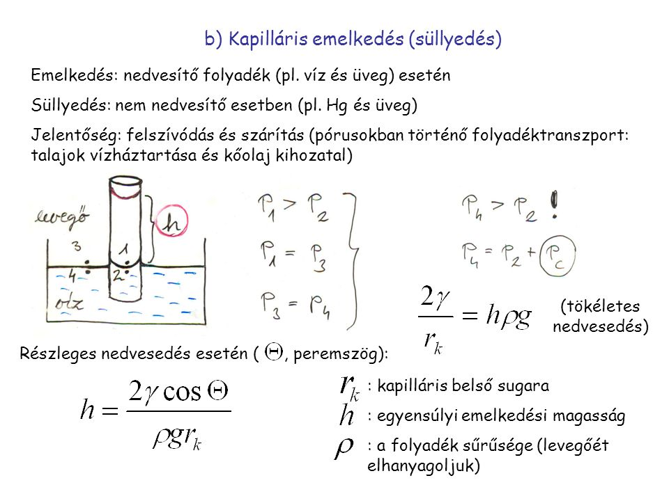 b) Kapilláris emelkedés (süllyedés)