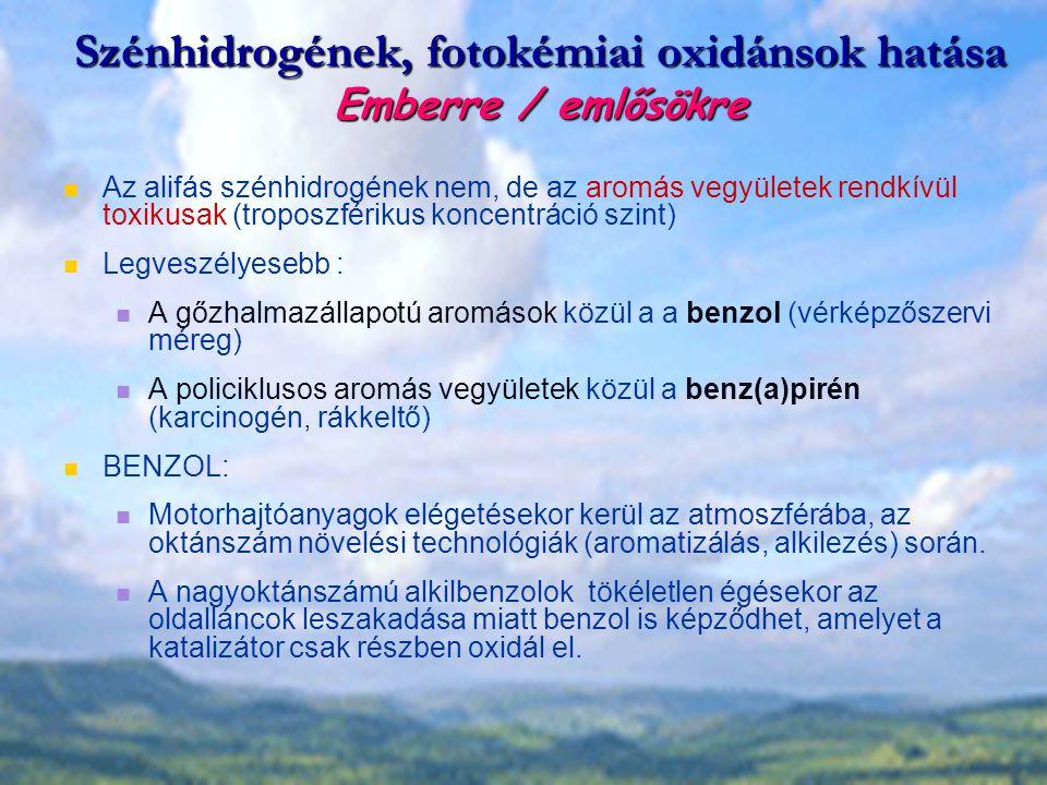 Szénhidrogének, fotokémiai oxidánsok hatása Emberre / emlősökre