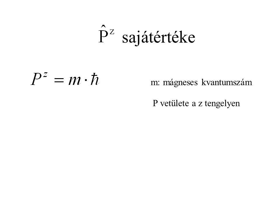 sajátértéke m: mágneses kvantumszám P vetülete a z tengelyen