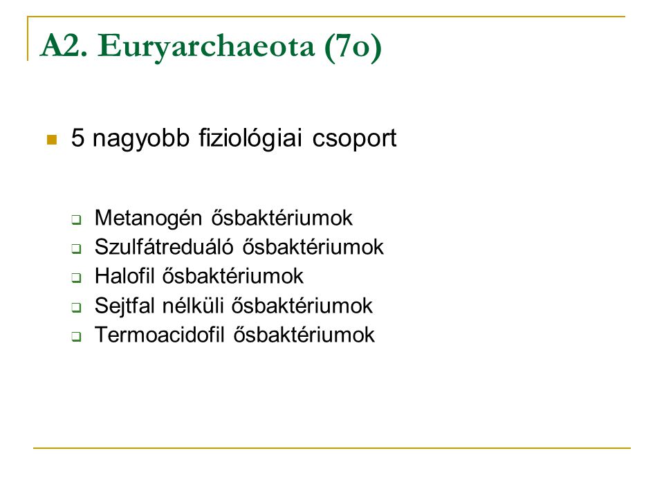 A2. Euryarchaeota (7o) 5 nagyobb fiziológiai csoport