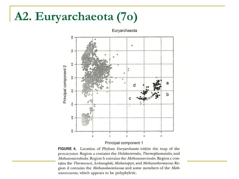 A2. Euryarchaeota (7o)