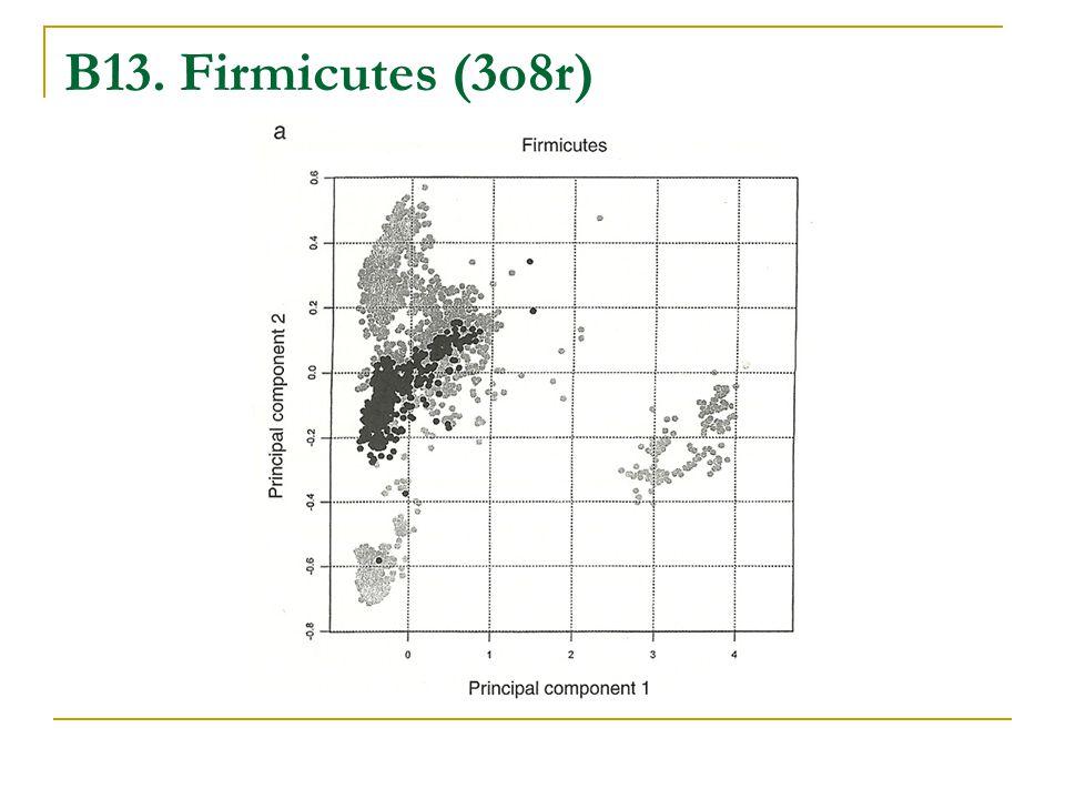 B13. Firmicutes (3o8r)