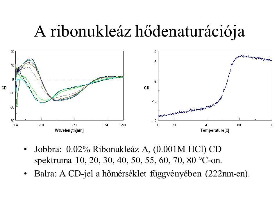 A ribonukleáz hődenaturációja
