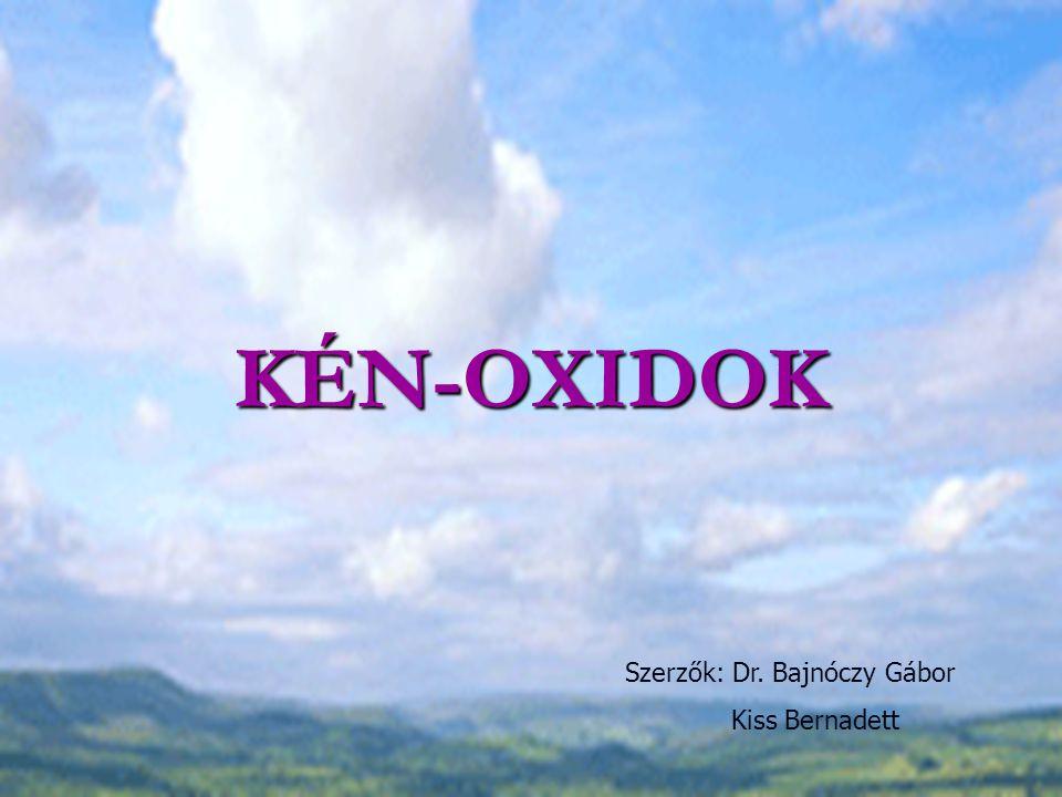 KÉN-OXIDOK Szerzők: Dr. Bajnóczy Gábor Kiss Bernadett