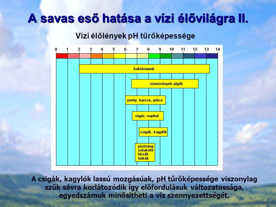 A savas eső hatása a vízi élővilágra II.