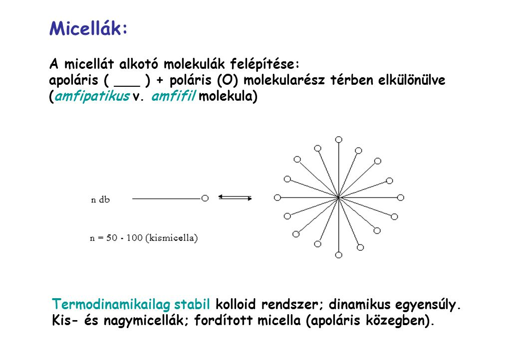 Micellák: A micellát alkotó molekulák felépítése: