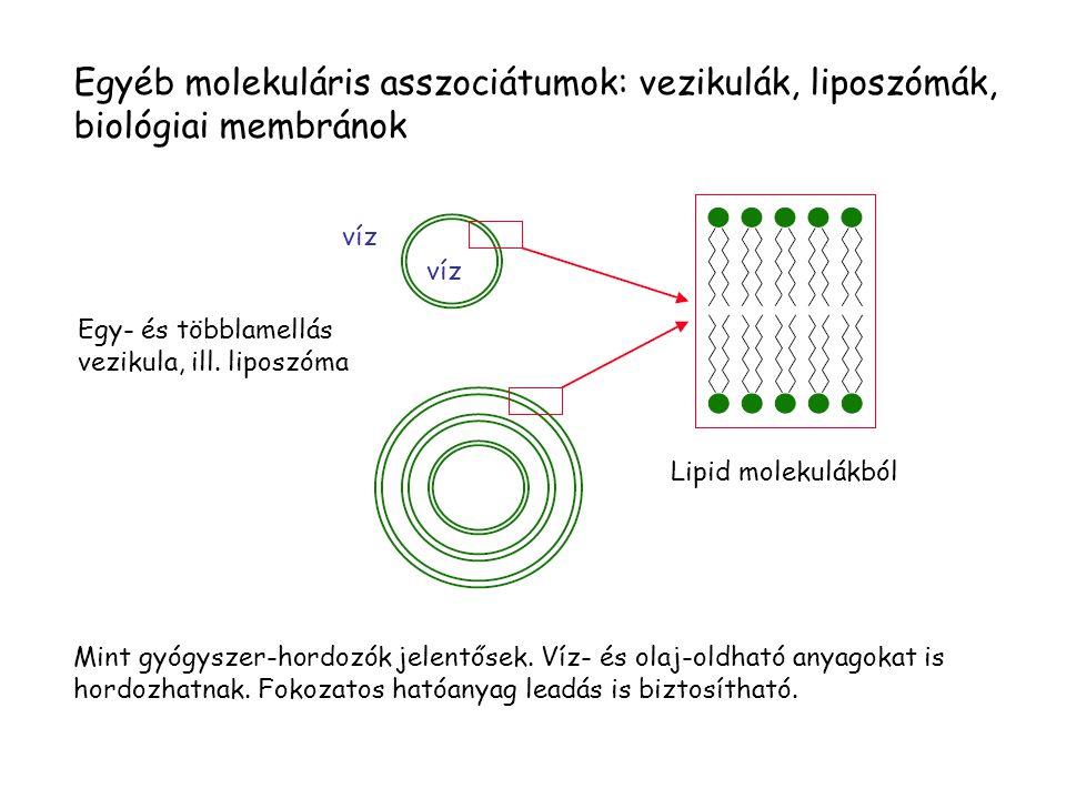Egyéb molekuláris asszociátumok: vezikulák, liposzómák, biológiai membránok