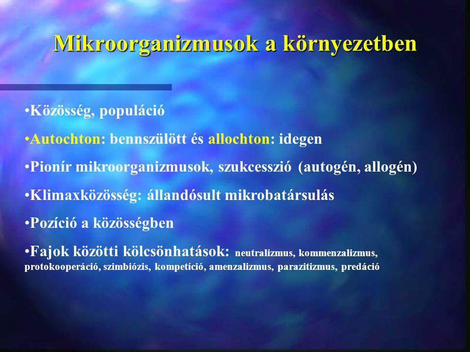 Mikroorganizmusok a környezetben