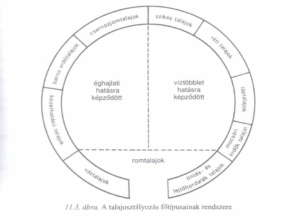 Talajosztályozási főtípusok