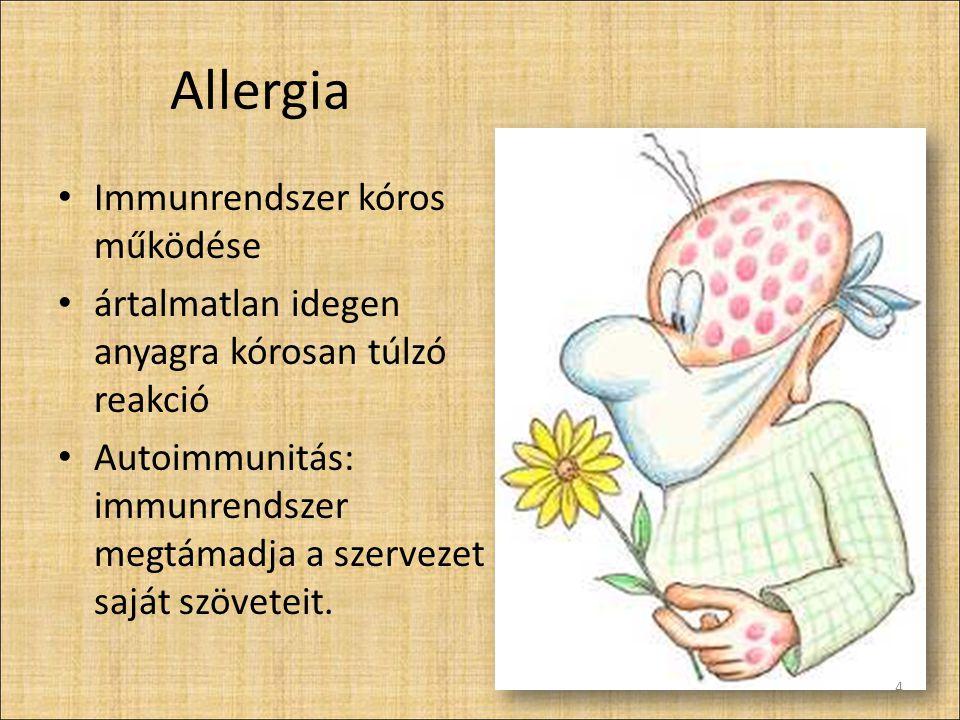 Allergia Immunrendszer kóros működése