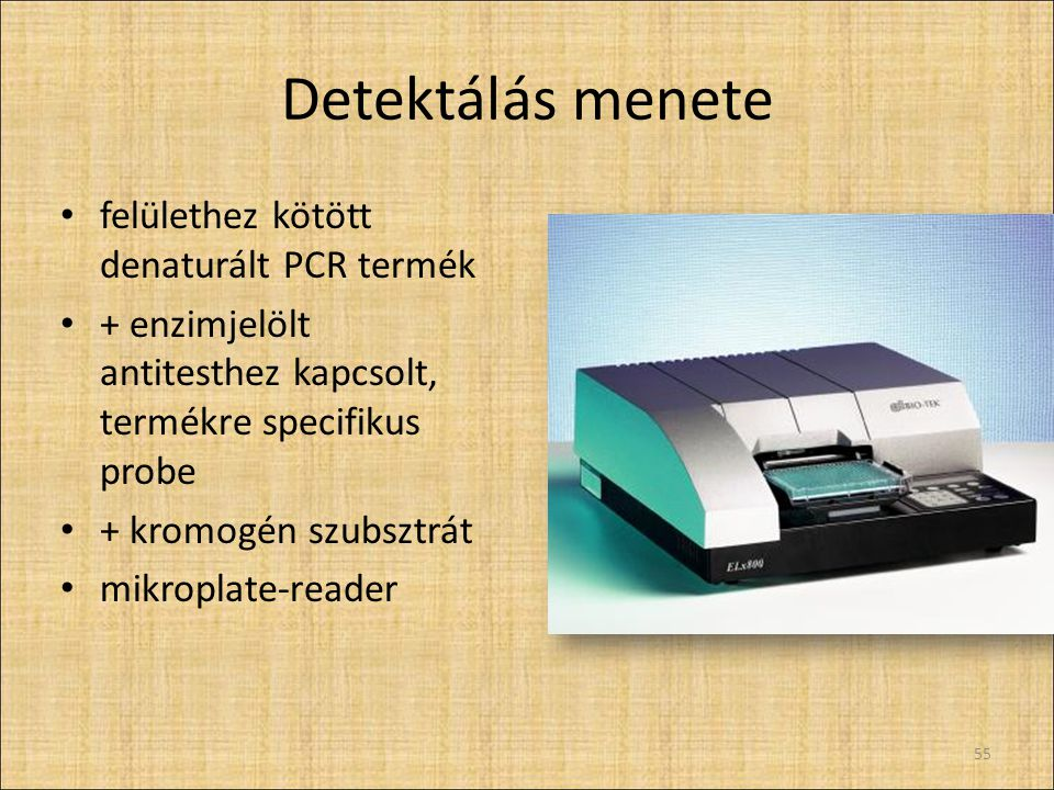Detektálás menete felülethez kötött denaturált PCR termék