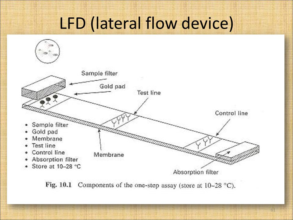 LFD (lateral flow device)