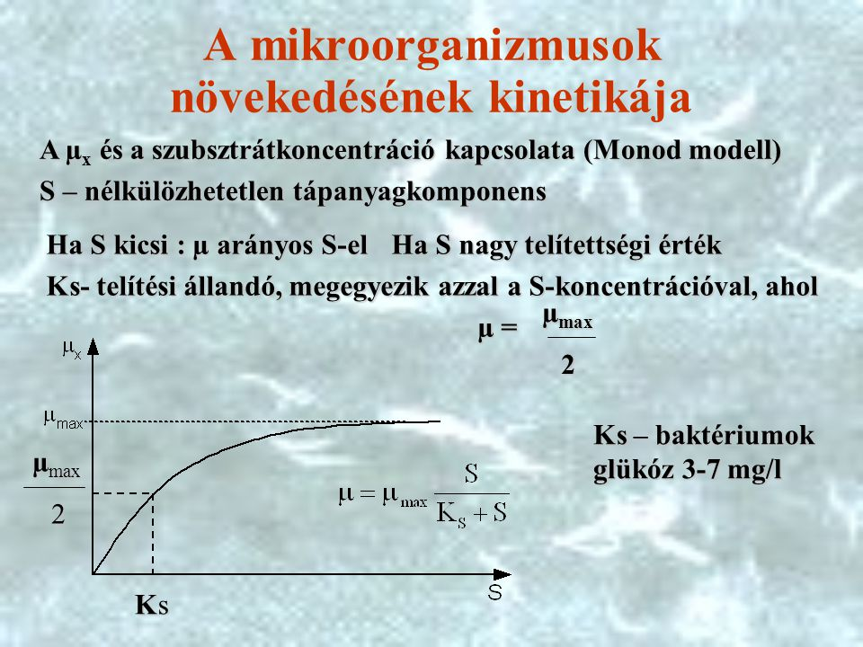 A mikroorganizmusok növekedésének kinetikája