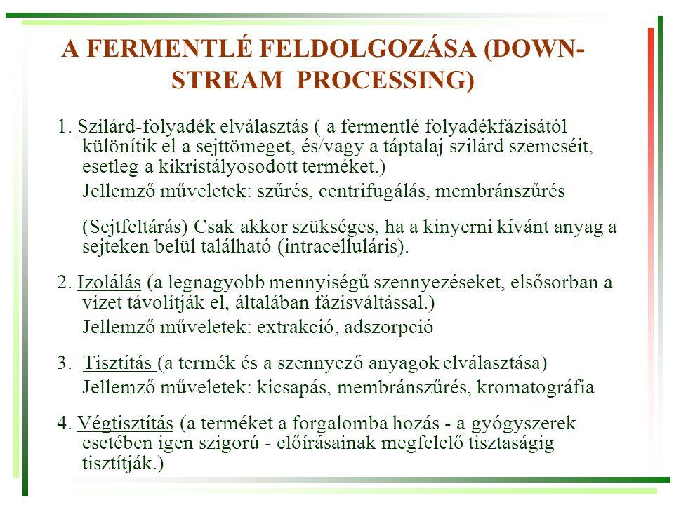 A FERMENTLÉ FELDOLGOZÁSA (DOWN-STREAM PROCESSING)