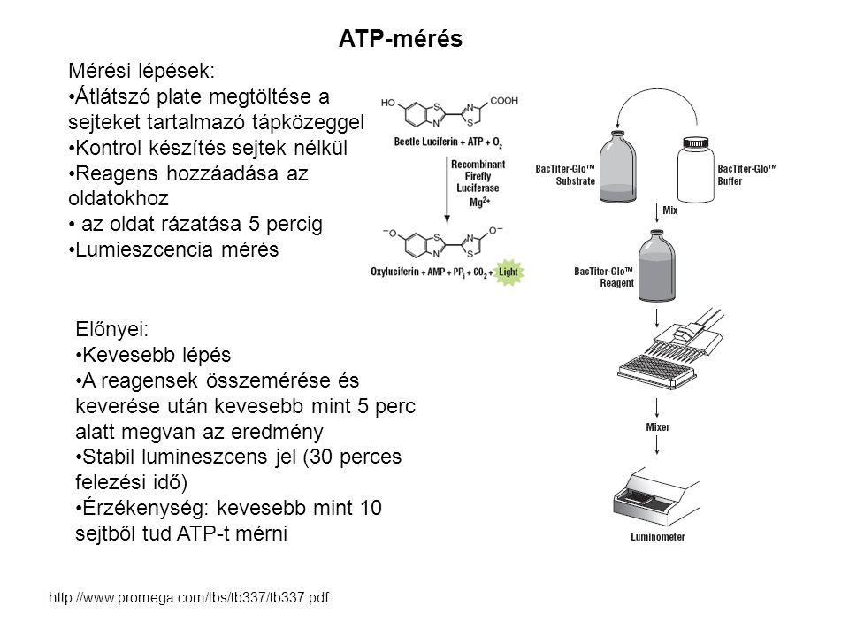 ATP-mérés Mérési lépések: