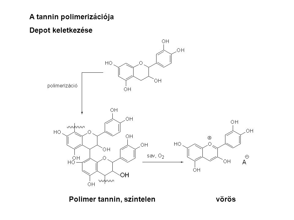 A tannin polimerizációja