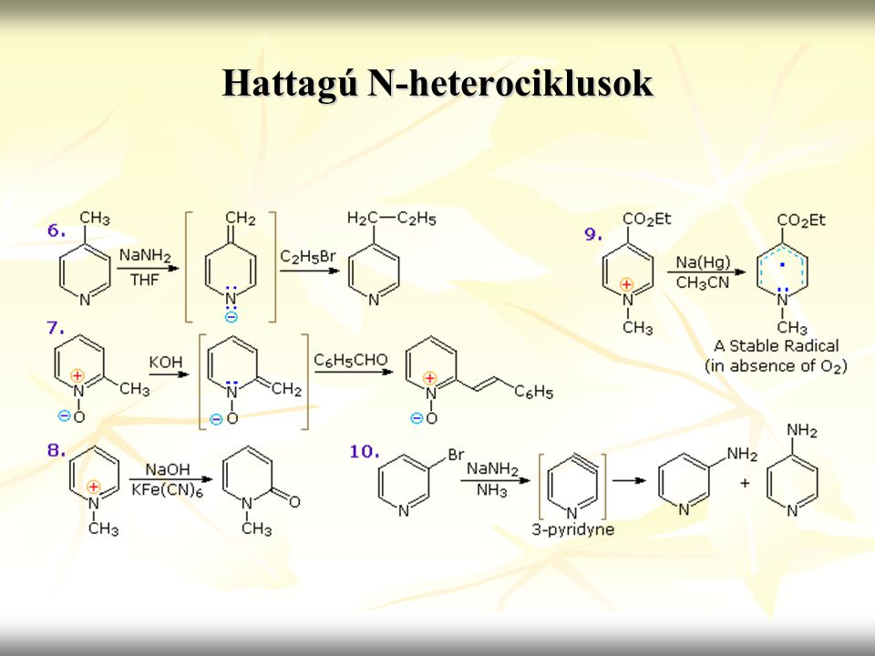 Hattagú N-heterociklusok