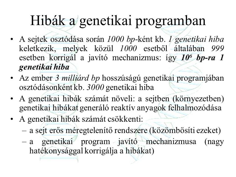 Hibák a genetikai programban