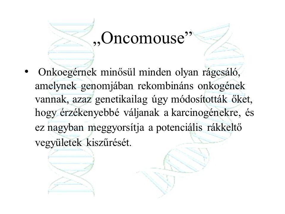 """Oncomouse"