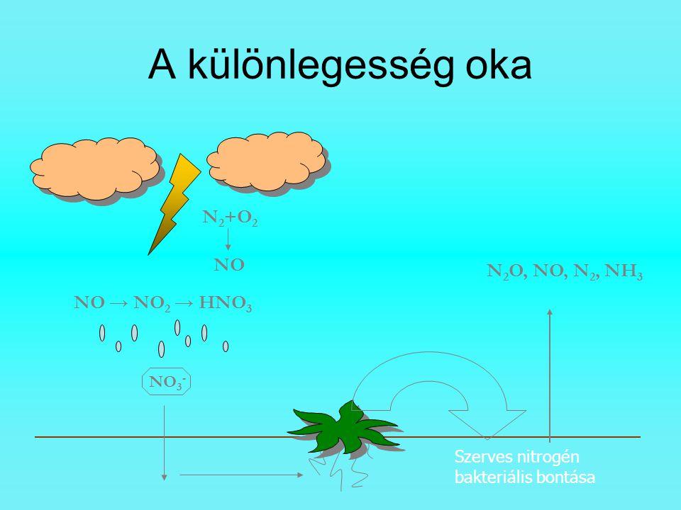 A különlegesség oka N2+O2 NO N2O, NO, N2, NH3 NO → NO2 → HNO3 NO3-
