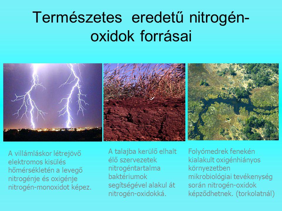 Természetes eredetű nitrogén-oxidok forrásai