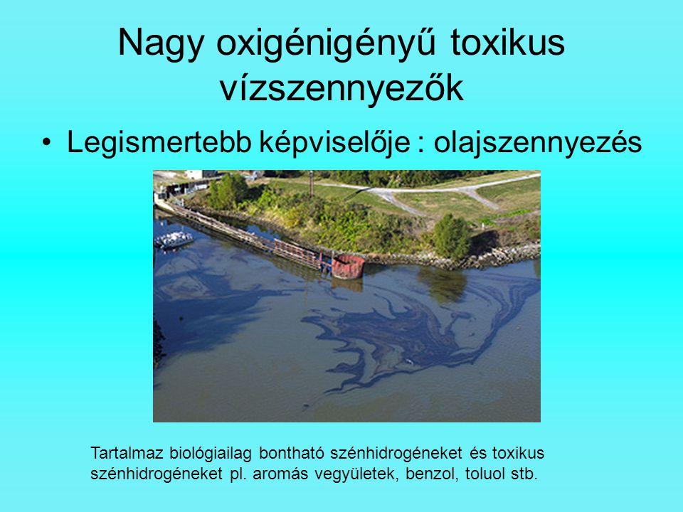Nagy oxigénigényű toxikus vízszennyezők