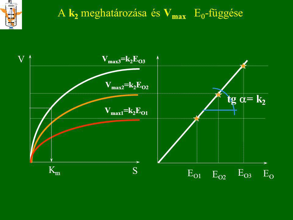 A k2 meghatározása és Vmax E0-függése